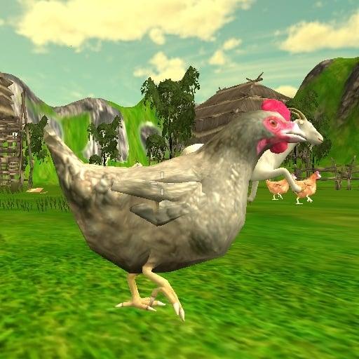 قنص الدجاجة