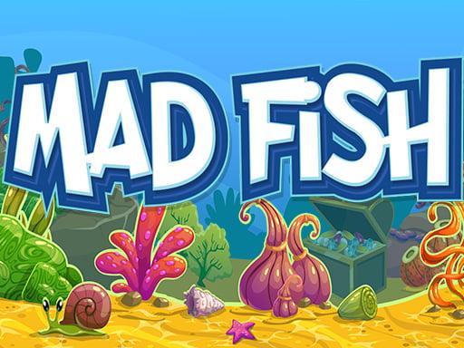 Play Mad Fish