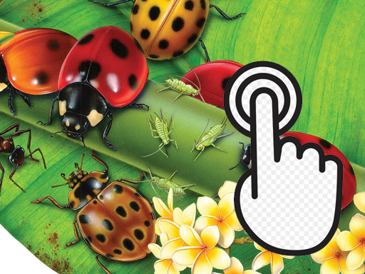 Play Ladybug Clicker