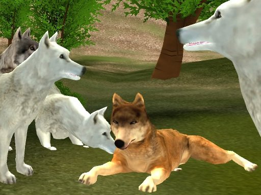 Wild Wolves - Popular Games - Cool Math Games