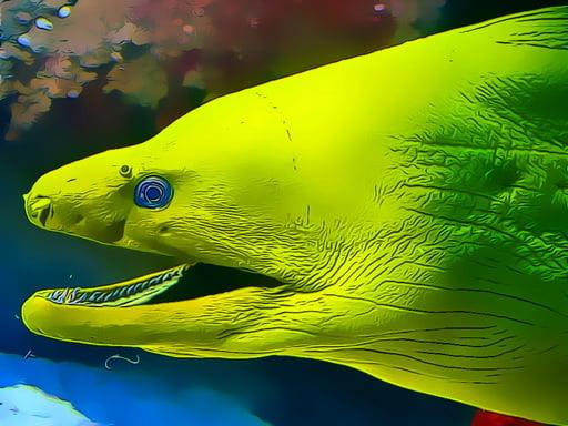 Underwater World Jigsaw