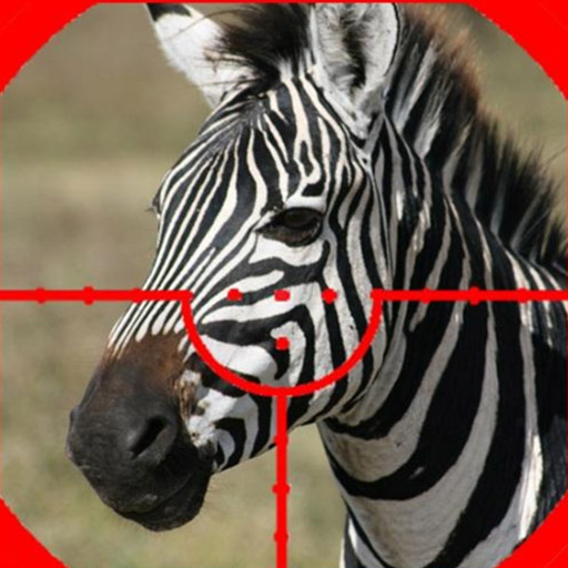 ZEBRA HUNTER SNIPER SHOOTING