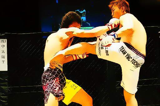 UFC Fighting Match Jigsaw
