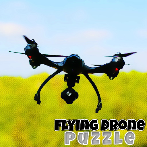 Flying Drone Puzzle