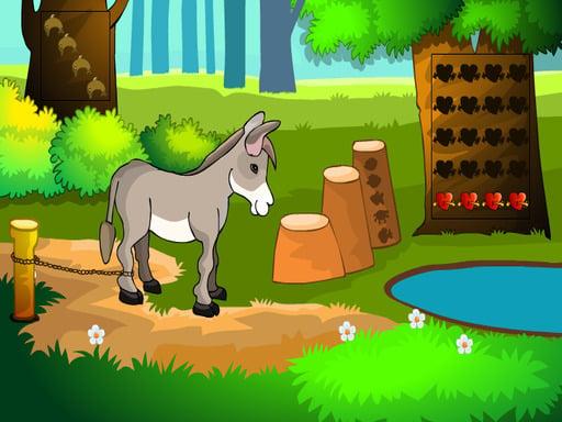 Donkey Rescue