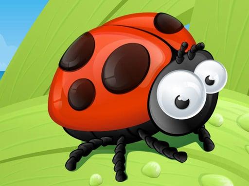 Ladybug Slide