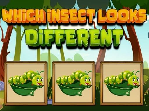Какие насекомые выглядят иначе