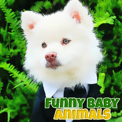 Funny Baby Animals