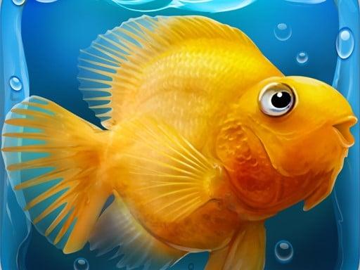Play Fish tank Aquarium