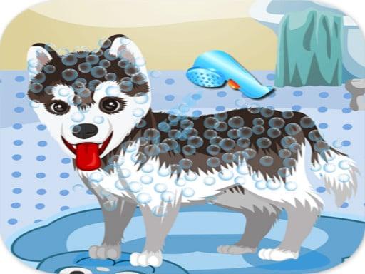 Моя милая собака купается