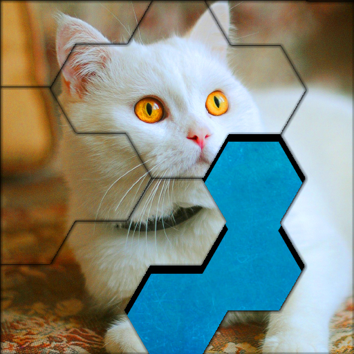 Blocks Hexa Jigsaw Puzzle