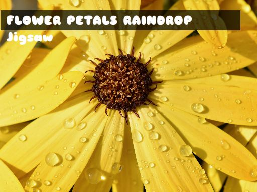 Flower Petals Raindrop Jigsaw