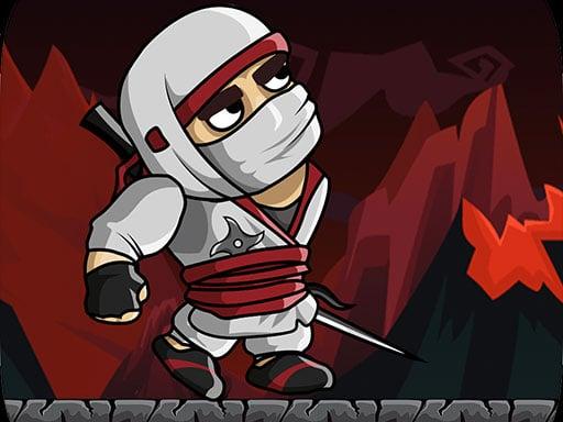 Ninja Warrior Shadow of Last Samurai