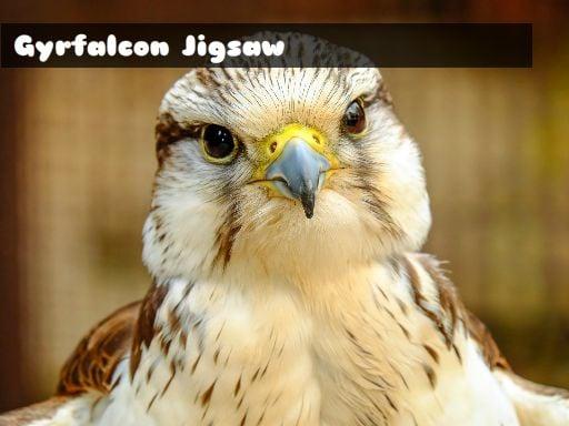 Gyrfalcon Jigsaw